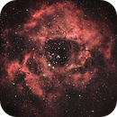 Rosette Nebula,                                Chris Morisette