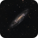 NGC 4236 Galaxy in Draco, the flying Frisbee,                                Stephan Linhart