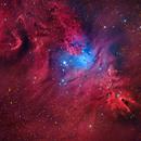 The Cone Nebula and Fox Fur Nebulas,                                tonyhallas