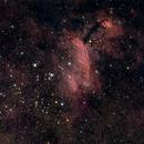 Prawn Nebula & NGC6242 Cluster,                                KiwiAstro
