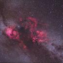 2 Panel of Cygnus (Re-edit),                                Christopher Scott