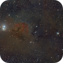 IC348 and NGC1333,                                Alexander Voigt