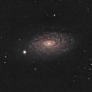 M63-Sunflower Galaxy,                                Gauthier Vasseur