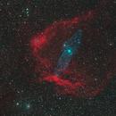 Gas menagerie:  IC 1396, SH2-129, Ou4,                                Jeff Bottman