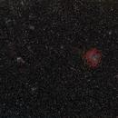 Rosette and Cone nebulae Region,                                OrionRider