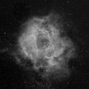 Rosette Nebula in Ha,                                Greg Harp