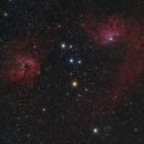 IC 405 e IC 410,                                Valerio Pardi
