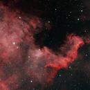 NGC 7000 HOO,                                William Fewster