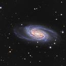 NGC 2903,                                  astromat89