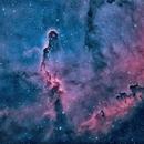IC 1396 & Barnard163 en HOO Zoom,                                Georges