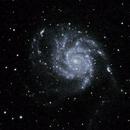 M101: The Pinwheel Galaxy (2019),                                Daniel Tackley