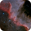 The Wall - Ngc7000,                                Salvopa