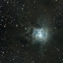 NGC 7023,                                Virginie