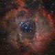 NGC2244,                                Jens Zippel