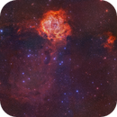 From Cone to Rosette - To Rosette From Cone - DSS2 145 panel Mosaic :-),                                Daniel Nobre