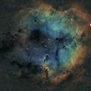 ic1396 (Elephant Trunk Nebula),                                Jean-Marie Locci