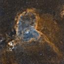 Heart Nebula SHO,                                Pogo30