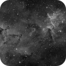 Heart of the Heart Nebula (IC1805) Ha monochrome,                                Stuart Goodwin