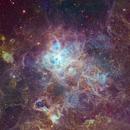 Tarantula Nebula - Hubble Palette,                                Eric Coles (coles44)