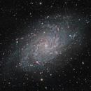 Triangulum Galaxy (M33),                                Luca Marinelli
