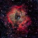 Rosette Nebula Samyang 135mm f2 - heavily cropped,                                George B Grimm