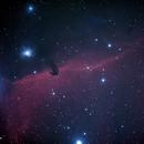 Horsehead Nebula,                                Robin Clark - EAA imager
