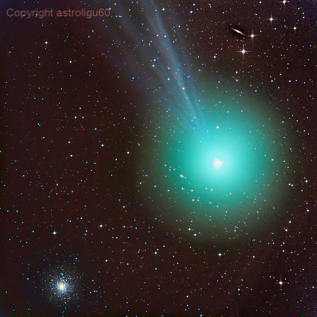 cometa C/2014 Q2 Lovejoy del 29/12/2014 vicina all'ammasso globulare M79,                                Rolando Ligustri