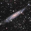 NGC 7640,                                sydney