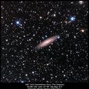 NGC 2613,                                Rauno Päivinen