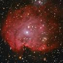 """NGC 2174, der """"Affenkopf-Nebel"""",                                Martin Luther"""