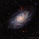 M33 Triangulum Galaxy HaLRGB,                                Paddy Gilliland