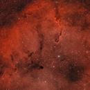 IC1396,                                wsg