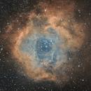 NGC 2244 Rosette Nebula,                                Chief