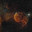 IC 443  Jellyfish Nebula in SHO,                                Roland Schliessus