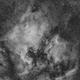 North America & Pelican nebulae,                                Alessio Pariani