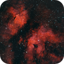 IC1318, The Gamma Cygni Nebula, narrowband tri-color,                                riot1013