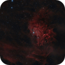 IC 405 - Flaming Star Nebula,                                Fabian Rodriguez...