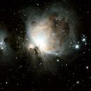 The Great Orion Nebula,                                Jason Hansen
