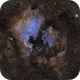 NGC 7000,                                Clayton Bownds