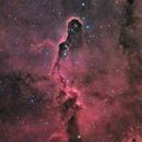Elephant's Trunk Nebula Closeup in HaRGB,                                Alan Pham