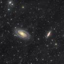M81 - Bodes Galaxy,                                Elvie1