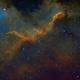 Cygnus Wall,                                Jaroslaw Burczynski