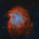 NGC 2174/2175 Monkey Head Nebula,                                Kathy Walker