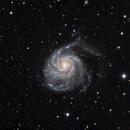 M101 - LRGB,                                Paulo  Lobao
