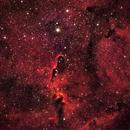 Elephant Trunk Nebula,                                Gaprunella