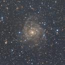 IC 342 Maffei 1 Group,                                Richard H