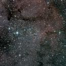 IC1396,                                Ray Heinle