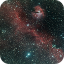 The Seagull nebula,                                John Sim