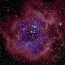 NGC 2244 - Caldwell 49 - The rosette nebula,                                Jean-Marie MESSINA