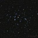 The Beehive Cluster,                                Astro-Rudi
